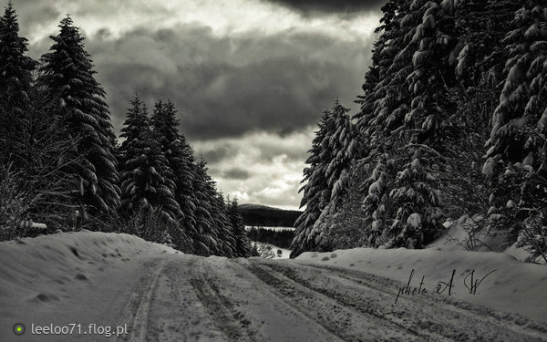 https://s27.flog.pl/media/foto_middle/12964222_a-tu-zima--akurat--.jpg