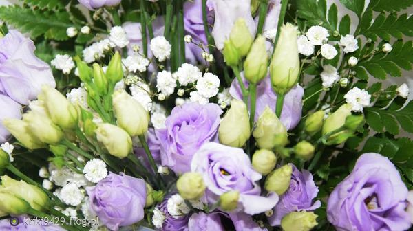https://s27.flog.pl/media/foto_middle/13050608_krzysztof-wroblak-kwiat-kobiecosci--z-dedykacja-dla-wszystkich-kobiet-z-okazji-waszego-wyjatkowego-swieta-.jpg